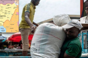 Reasons for restricting food imports in Nigeria