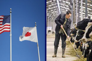 Japan trade agreement is a priority for the dairy industry