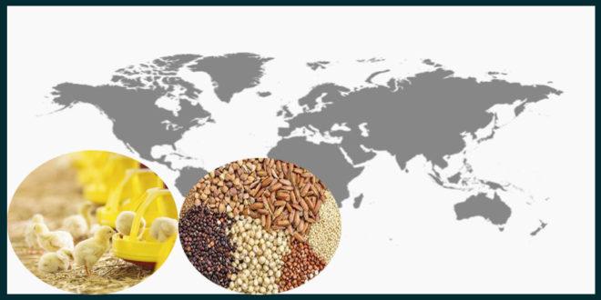 World Feed Ingredients: Price Indication November 2019