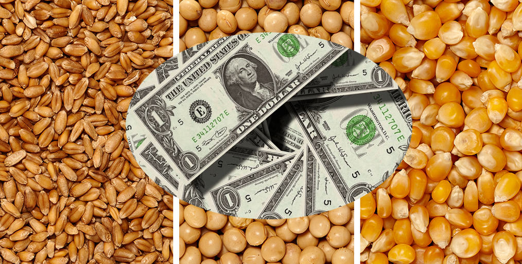 Wheat, soybean futures reach highest prices