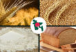Wheat flour is the 2nd food crop of Bangladesh