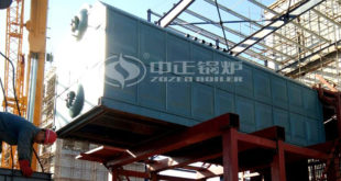 Hebei Yigao Bioenergy & ZOZEN worked together