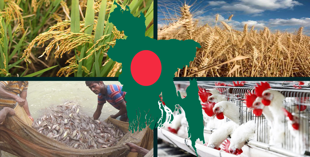 Credit distribution in the agro sector has increased
