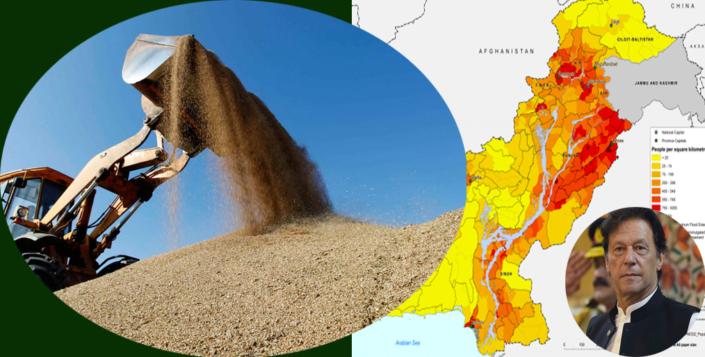 Pakistan will import 300,000 tons of wheat to meet the crisis