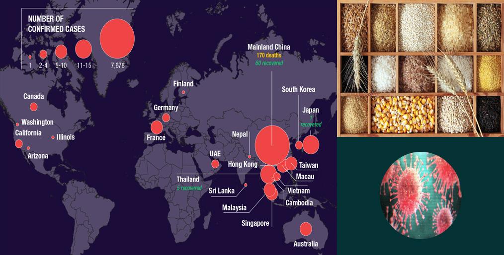 Coronavirus is rattling the world's grain market