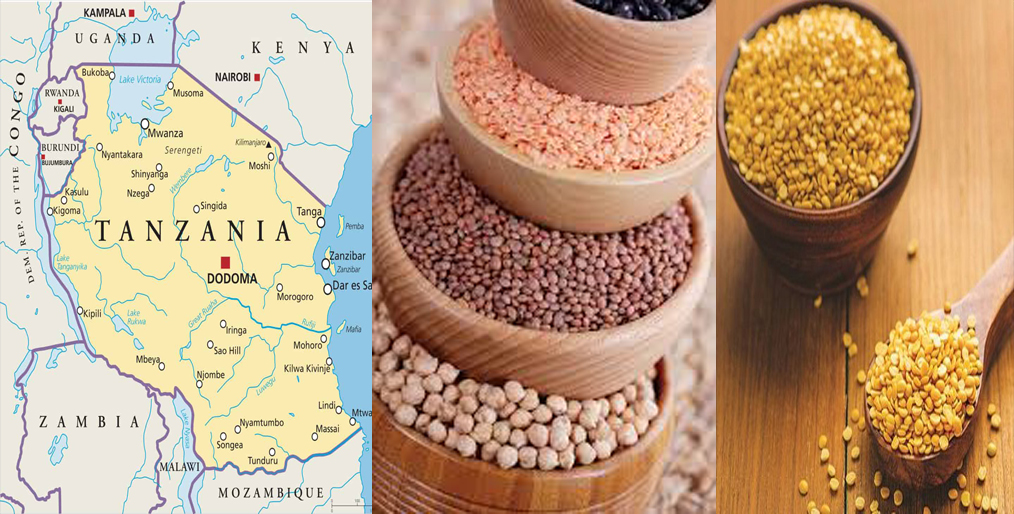 Competition in the Tanzanian Dal Sector