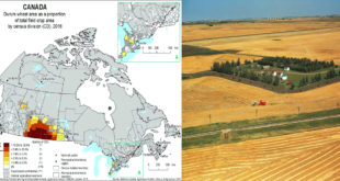 How climate change helps feed Canada's remote regions