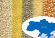 Ukraine weekly seaport grain exports fall sharply