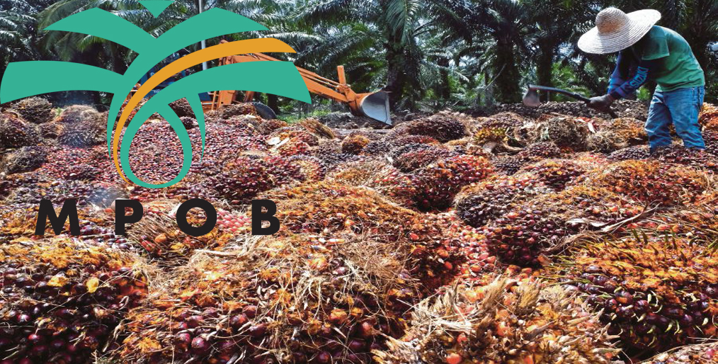 'Palm oil demand to remain weak in first-half 2020 due to virus lockdowns'
