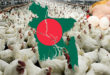 Bangladesh Poultry Industry in the face of loss