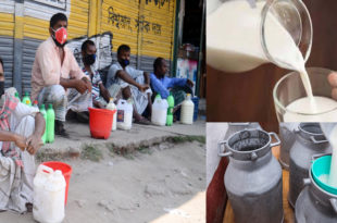 Dairy industry in Bangladesh affected by Coronavirus