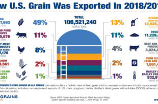 Tracking Exports of Grains In All Forms Captures Holistic Value Of Trade