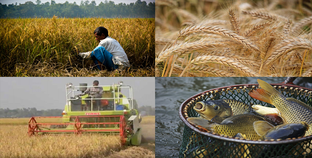 Agriculture sector got the second highest priority in the budget