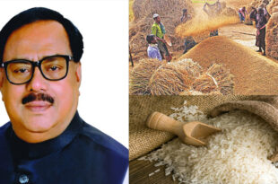 Govt. will procure rice at previously fixed rates