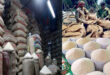 Price of new stocks of paddy & rice are increasing