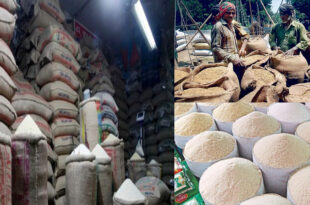 Price of new stocks of paddy is increasing