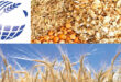 IGC'S Grain Market Report: June 25, 2020