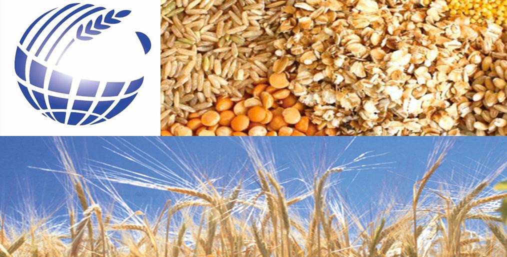 IGC'S Grain Market Report: June 25, 2020