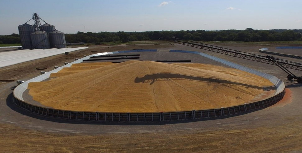 Grain Bunker: Future of Grain Storage in India