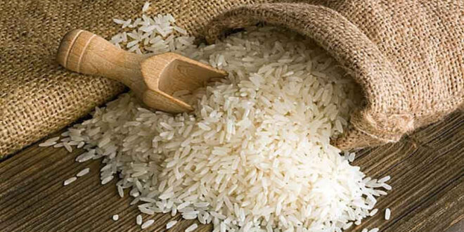 Government is thinking of importing rice