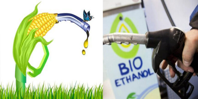 Demand for bio-ethanol is likely to recover