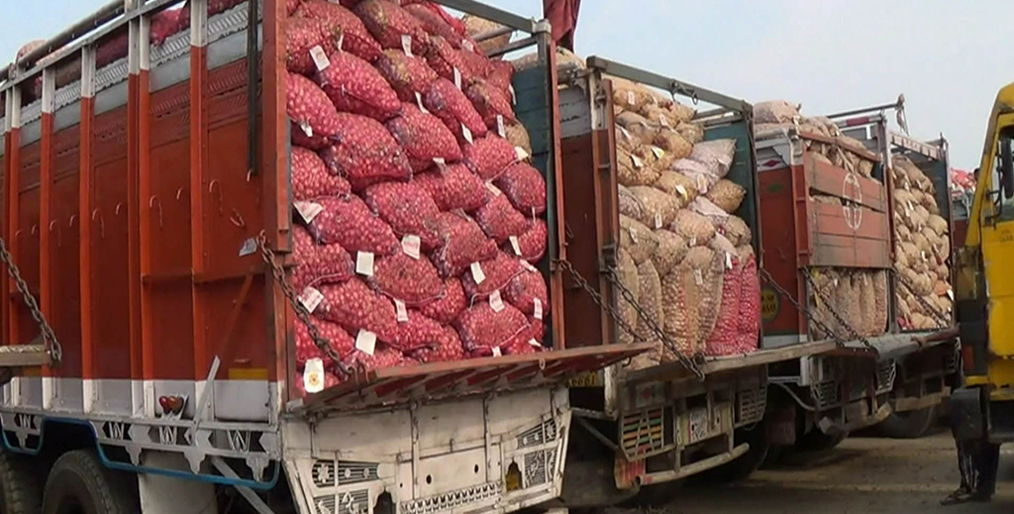 Importers are worried about the arrival of onions in the country