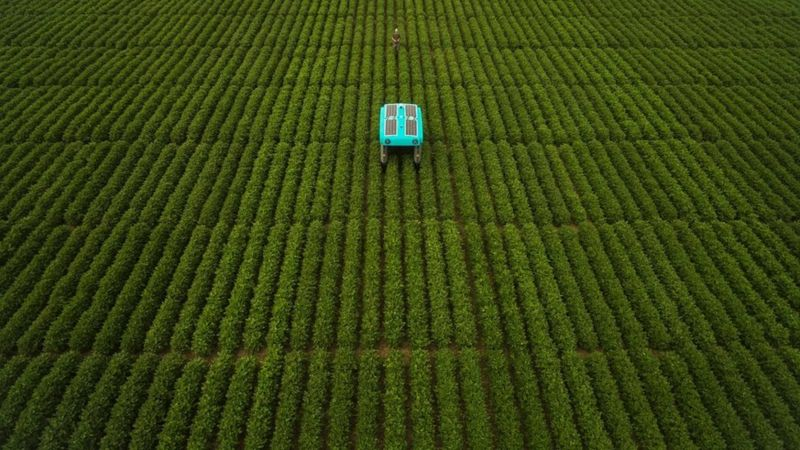 Google has released a mineral crop-inspection robot
