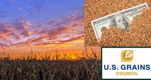 A constant need to address a lack of understanding of the U.S. grain marketing system