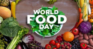 World Food Day 2020 has been celebrated in Bangladesh as well as all over the world