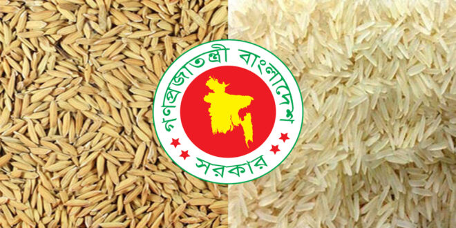 In the current Aman season the government will buy paddy at Tk 26 and rice at Tk 37 per kg