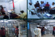 A follow up training by AXON Engr to one of effective user in Bangladesh