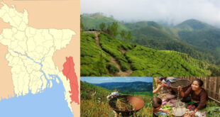 ACHIEVING FOOD AND NUTRITION SECURITY IN THE CHITTAGONG HILL TRACTS