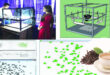 Researchers of Sylhet Agricultural University (SAU) innovated tea grading method
