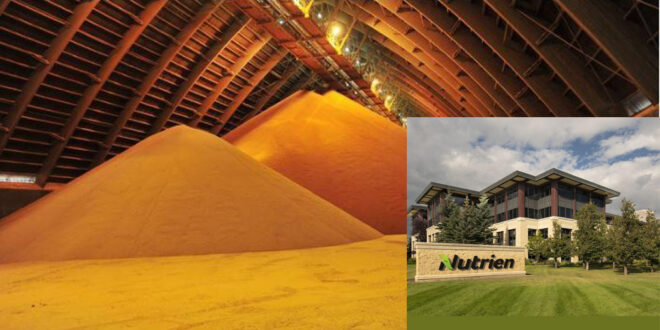 Canada's Nutrient Ltd., the world's largest fertilizer producer has boosted its full-year profit margin