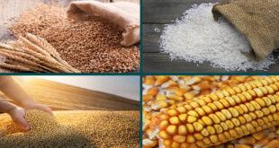 Grain Market Report : IGC, APRIL-2021