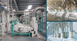 Various aspects of flour milling process in flour milling industry