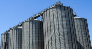 Initiative to set up 30 silos across the country to ensure fair price of paddy