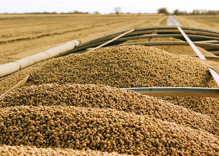 Soybean imports in China jumped 11.6% in June compared to May