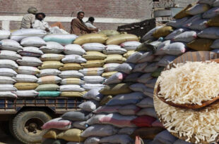 Rice trade was disrupted due to increase in freight charges