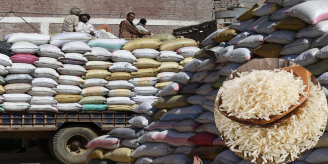 Rice trade is being hampered due to increase in freight charges