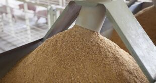 """""""The feed industry is going through a very bad time owing to the pandemic, many feed mills are now struggling to run their businesses."""""""
