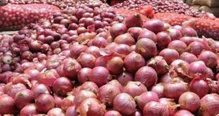 Onion stocks are adequate, yet the market is volatile: The minister urged not to panic