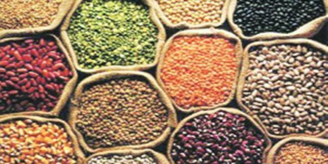 Prices of pulses in India by area till 16.10.2021